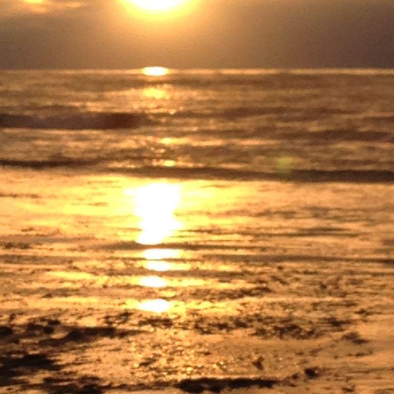 Sunsets 11-22-13 019