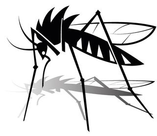 Mosquito-vector-graphics