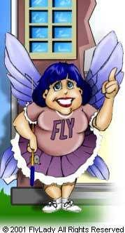 Fly_lady_8ec4